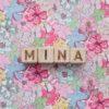Cubes lettres MINA-1