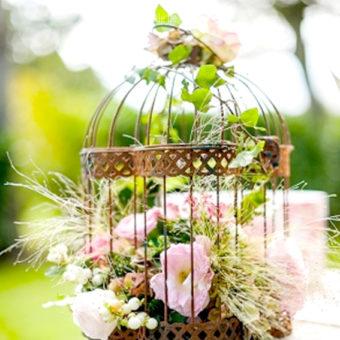 cage-oiseau-vieillie-3
