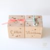 Cube naissance GM Célia Nathan papillon-1