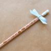 crayon paul renard-1